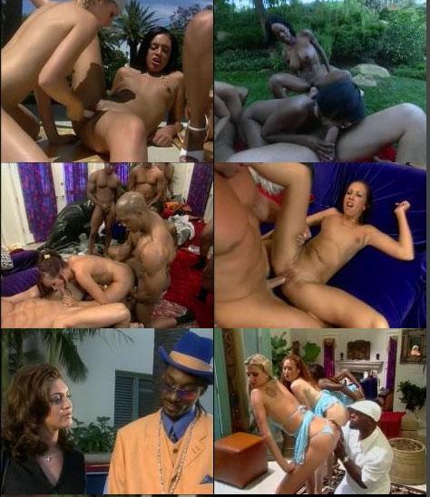 Snoop Dogg Sex Movie